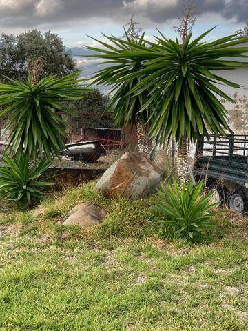 imagen 3 de Venta de finca con cuadras para caballos en Castilblanco de los Arroyos