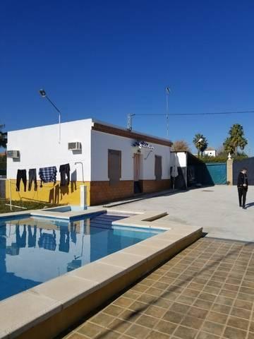 imagen 5 de Venta de finca con vivienda en Paradas (Sevilla)