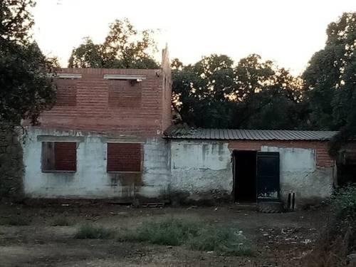 imagen 3 de Venta de bonita finca ideal para ganado en Sevilla
