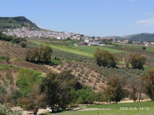 imagen 2 de Venta de finca con casa en plena naturaleza (Villanueva de San Juan)