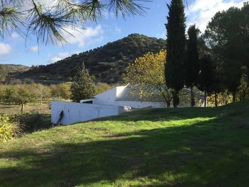 imagen 3 de Venta de finca con construcciones en Algamitas (Sevilla)