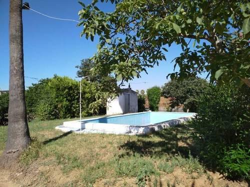 imagen 4 de Venta de parcela de naranjos con casa