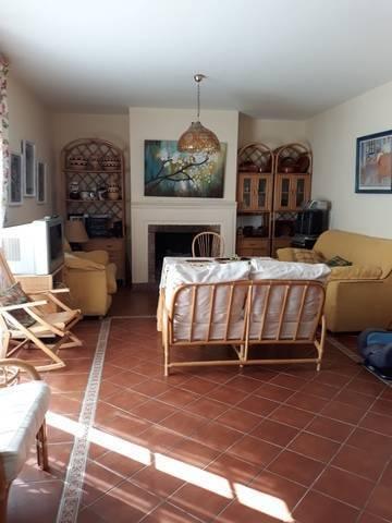 imagen 4 de Venta de bonita finca con vivienda en la Sierra -norte de Sevilla