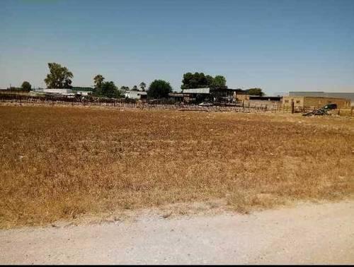imagen 2 de Venta de finca ideal para ganadería en Utrera (Sevilla)