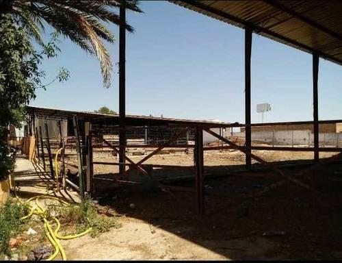 imagen 4 de Venta de finca ideal para ganadería en Utrera (Sevilla)