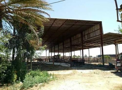 imagen 5 de Venta de finca ideal para ganadería en Utrera (Sevilla)