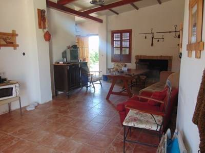 imagen 5 de Venta de finca con vivienda y plantaciones de naranjos en Sevilla