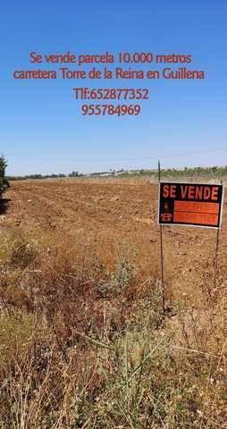 imagen 1 de Venta de terreno rústico en Guillena (Sevilla)