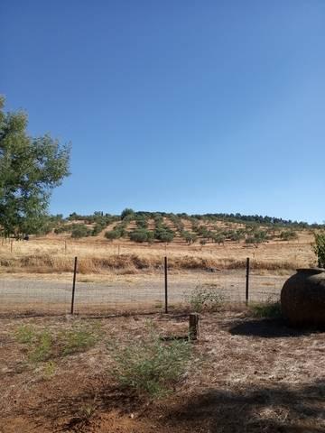 imagen 1 de Venta de finca con 4 casas en Cazalla de la Sierra