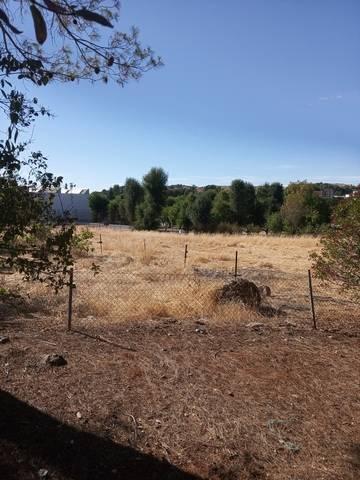 imagen 2 de Venta de finca con 4 casas en Cazalla de la Sierra