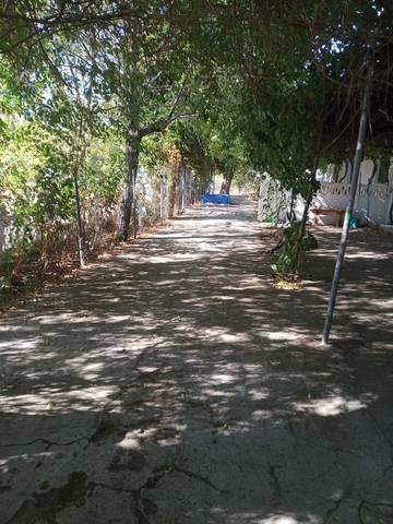 imagen 5 de Venta de finca con 4 casas en Cazalla de la Sierra