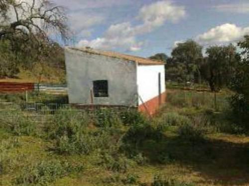 imagen 2 de Venta de finca para porcino en Castilblanco de los Arroyos
