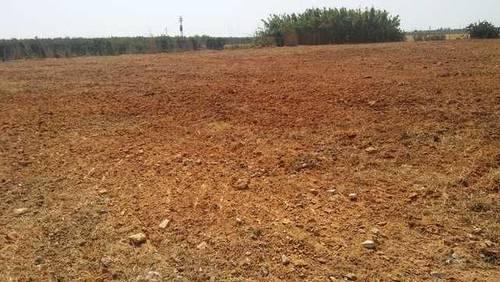 imagen 3 de Venta de parcela vallada en Bollullos