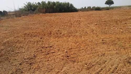 imagen 4 de Venta de parcela vallada en Bollullos