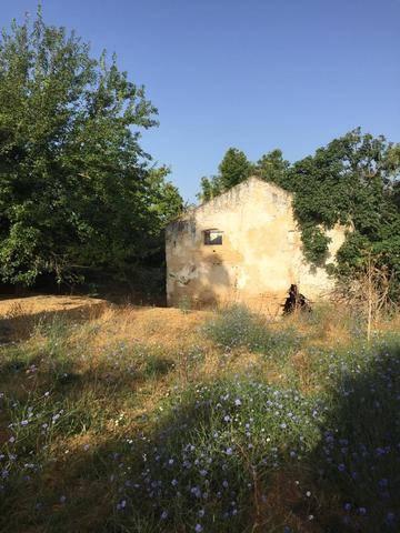 imagen 1 de Venta de parcela con antiguo molino para reformar en Sevilla
