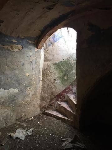 imagen 4 de Venta de parcela con antiguo molino para reformar en Sevilla