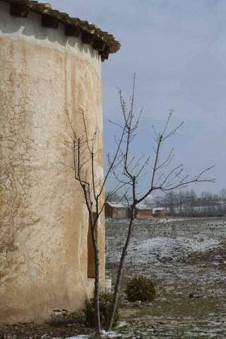imagen 3 de Venta de terreno con bodega y palomar en Piquera de San Esteban