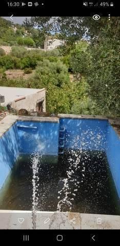 imagen 1 de Venta de finca rústica de olivos con construcción en Alcover