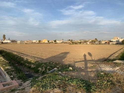 imagen 2 de Parcela rústica cultivable en Sant Jaume d`enveja
