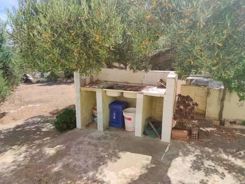 imagen 3 de Venta de finca con casa rural en Camarles (Tarragona)