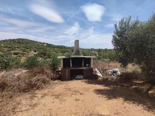 imagen 5 de Venta de finca con casa rural en Camarles (Tarragona)