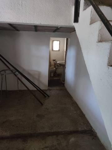 imagen 6 de Venta de finca con pallisa a reformar en Camarles