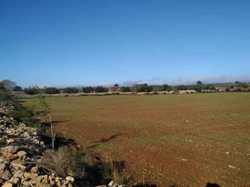 imagen 1 de Venta de finca en Alio (Tarragona)