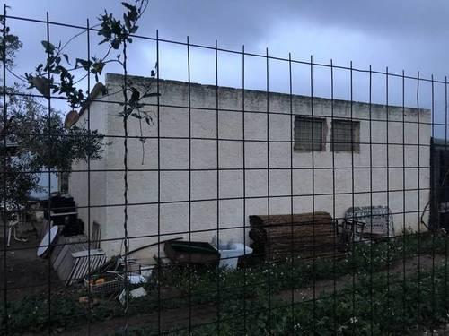 imagen 5 de Venta de finca de naranjos con vivienda en Tarragona