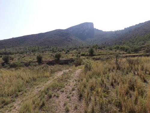 imagen 3 de Venta de finca con vistas espectaculares en Bot (Tarragona)