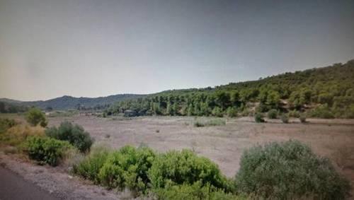 imagen 2 de Venta de finca en Flix (Tarragona)