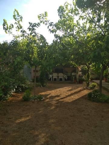 imagen 2 de Venta de finca con frutales y casa rural