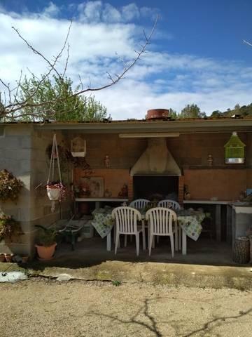 imagen 4 de Venta de finca con frutales y casa rural