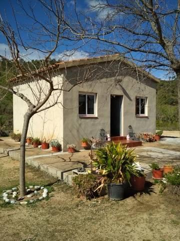 imagen 3 de Venta de finca con frutales y casa rural
