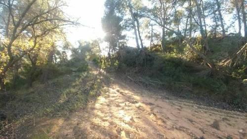 imagen 3 de Venta de finca rústica rodeada de naturaleza en L´Espulgas de Francoli
