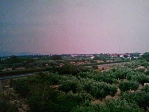 imagen 3 de Venta de terreno con olivos y pequeña casita en Aldea (Tarragona)