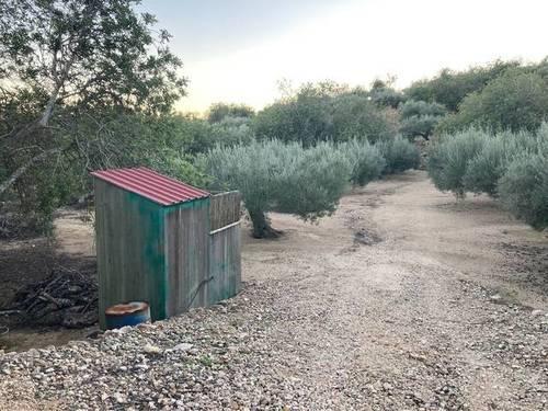 imagen 3 de Finca rústica con casa en El Perelló