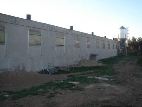 imagen 1 de Venta de granja de porcino en La Senia