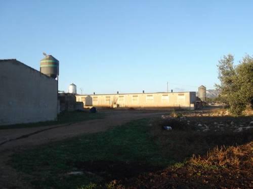 imagen 5 de Venta de granja de porcino en La Senia