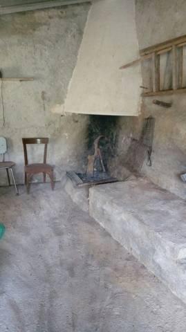 imagen 3 de Venta de olivar en Benifallet (Tarragona)