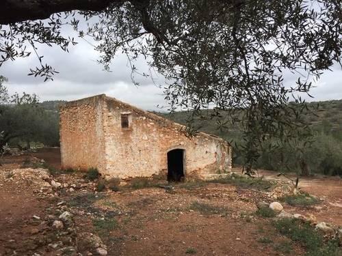 imagen 1 de Venta de finca con casa rural tradicional en L´Aldea (Tarragona)