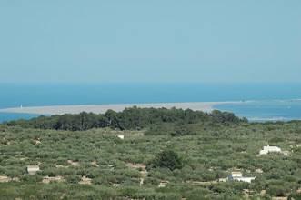imagen 2 de Venta de chalet y olivar con vistas al mar en L´Ampolla