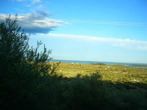 imagen 4 de Venta de chalet y olivar con vistas al mar en L´Ampolla