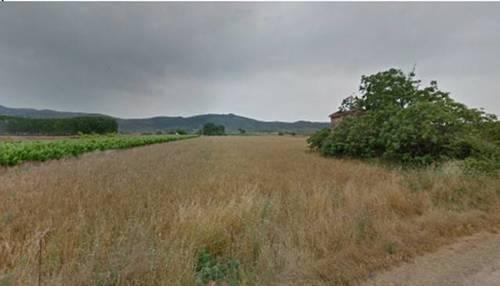 imagen 1 de Venta de finca de regadío en Ulldecona