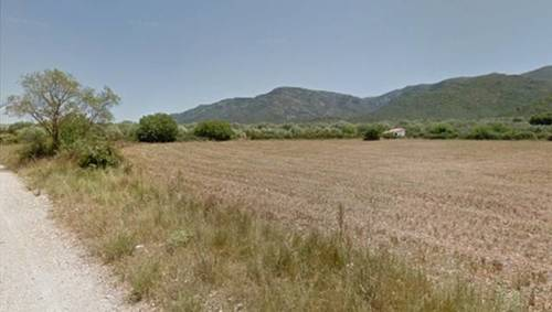 imagen 1 de Finca rústica de secano en Ulldecona (Tarragona)