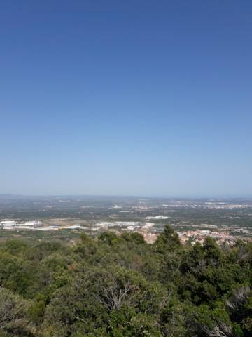 imagen 1 de Venta de finca en La selva del Camp (Tarragona)
