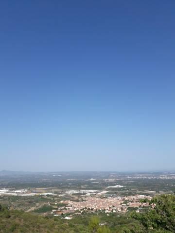 imagen 2 de Venta de finca en La selva del Camp (Tarragona)