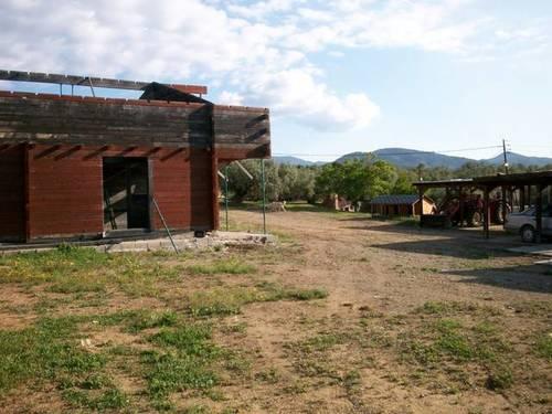 imagen 4 de Venta de finca de olivos con vivienda y molino en Les Borges del Camp (Tarragona)
