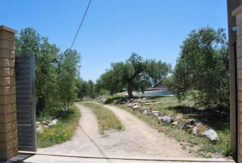 imagen 3 de Venta de finca de olivos con vivienda y molino en Les Borges del Camp (Tarragona)