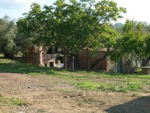 imagen 6 de Venta de finca de olivos con vivienda y molino en Les Borges del Camp (Tarragona)