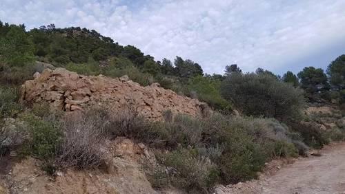 imagen 2 de Venta de finca rústica en Mora de Ebre